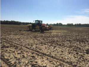 Application of herbicide prior to secondary tillage and planting